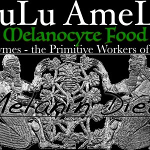 LuLu AmeLu Label.001