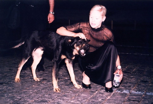 Du0027arcy Wretzky and dog My kinda gal Pinterest - cover letter for receptionist