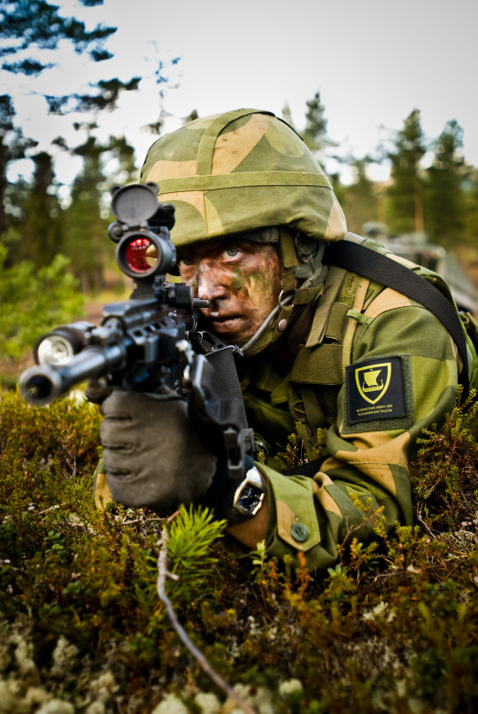 54 best Norwegian Army Norske Hæren images on Pinterest - army form