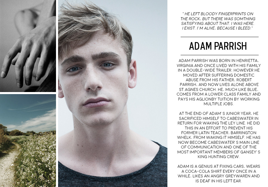 Adam Parrish - The Raven Cycle The Raven Boys Pinterest Ravens - jobs that are left