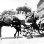 McGhie in Horse Taxi