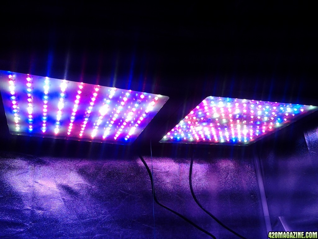 Mars Hydro Led Mars Hydro Led Grow Light Discussion
