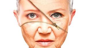 ageing_08fda140-6f35-11e5-8600-ad8872d9e6cf