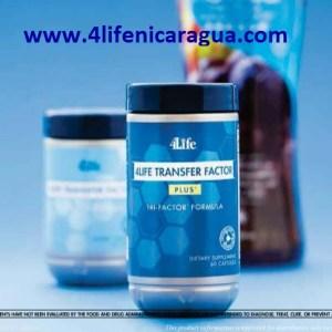 4life-transfer-factor-plus-nueva-presentacion-4