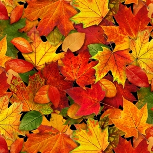 Maple Leaf Wallpaper For Fall Season Cotton Fabric Nature Fabric Landscape Medley Autumn