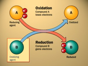 Pokok Bahasan Materi Dan Perubahan Kimia Kimia Dasar I Robby Ncstaffugmacid Dan Setiap Ion Cl Juga Dikelilingi Oleh 6 Ion Na 2 Keras Kaku Dan