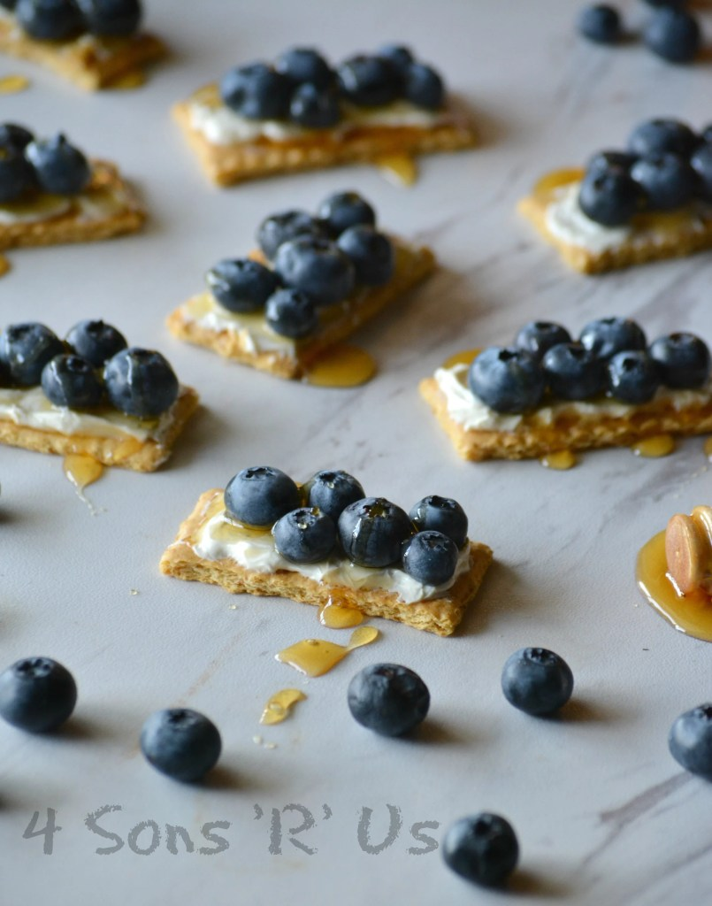 Blueberry Cheesecake Snack Bites - 4 Sons 'R' Us