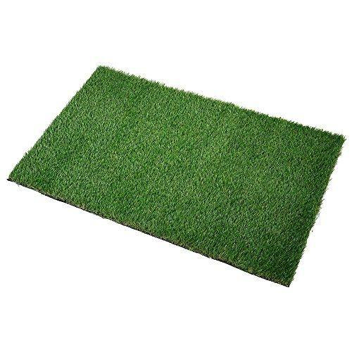 Green Plastic Grass Mat Rs 65 Square Feet Indian Carpet - Plastic Grass Mat
