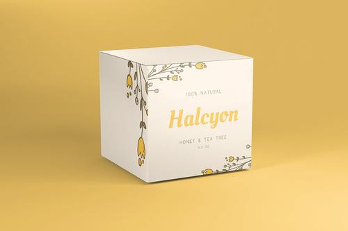 Packaging Box Printing Services - Carton Box Printing Services