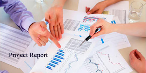 Project Report Services in India - project report