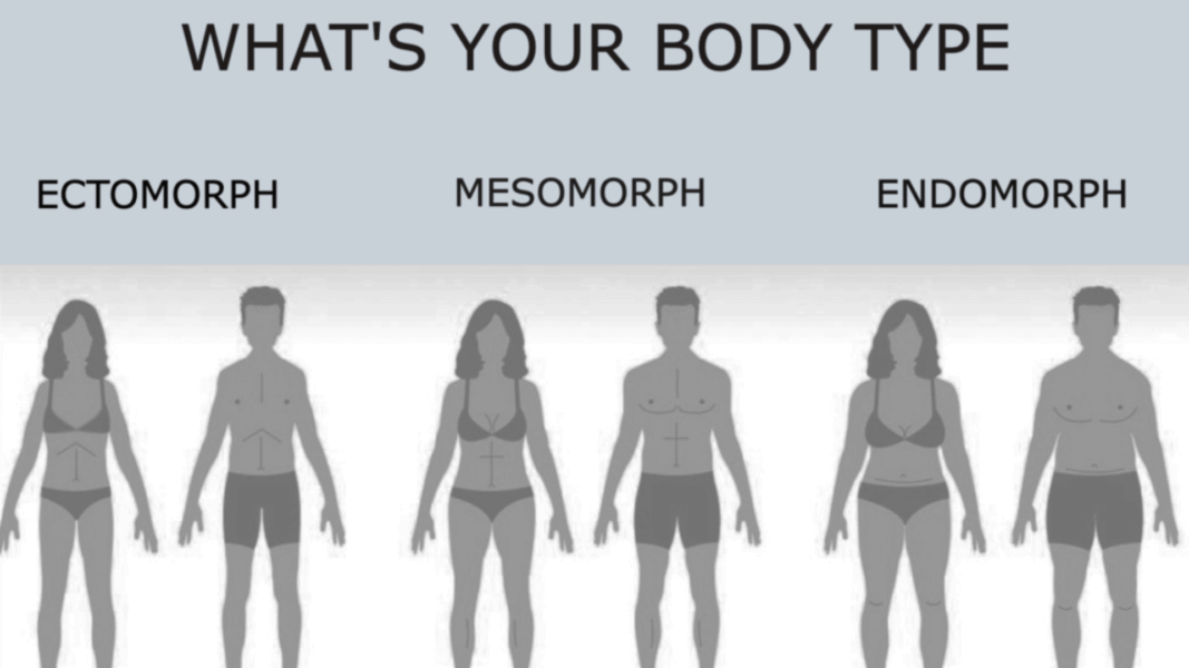 Lifestyle Blog Over 50 What Is An Endomorph Body Type And Can An Endomorph Lose