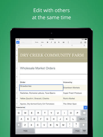Google Sheets for iPad