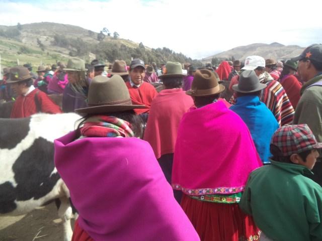 Guamote market
