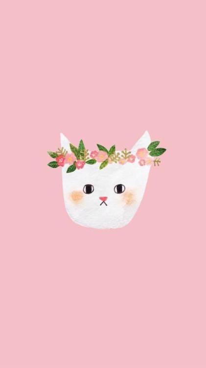 Wallpaper Cute Pink For Iphone 6 Cat Wallpaper Tumblr