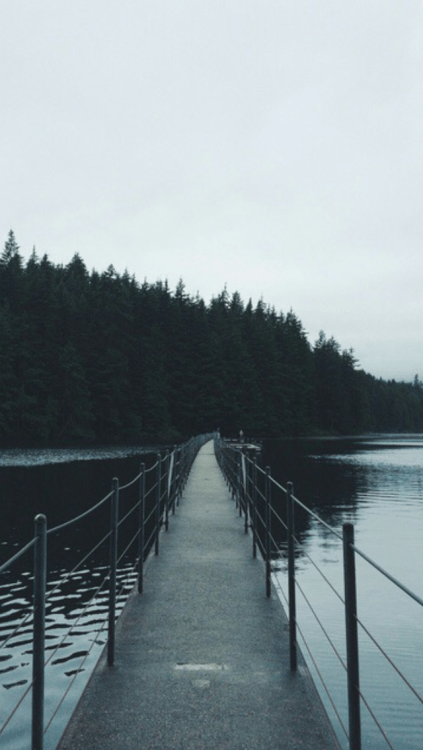 Hipster Iphone Wallpaper Quote Green Leaves Wallpaper Tumblr