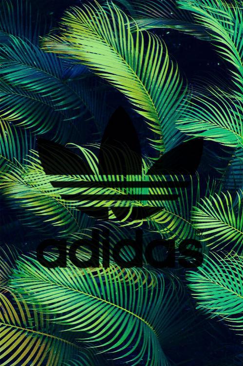 Adidas Originals Wallpaper Hd Adidas Logo On Tumblr