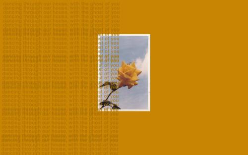 Leaf Wallpaper Quote Mac Macbook Backgrounds Tumblr