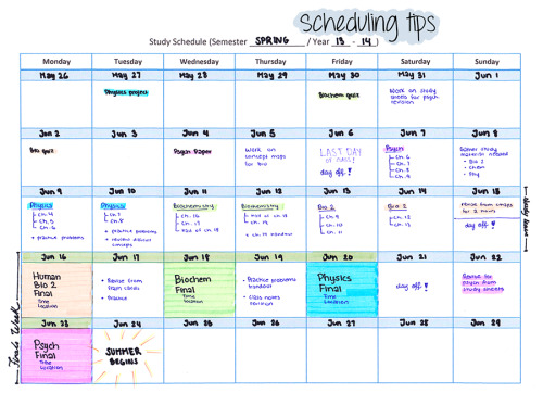 study schedule Tumblr