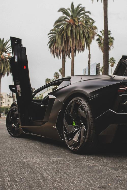 themanliness:Mansory Aventador | Source | MVMT | Facebook