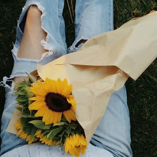 Sunflower Iphone Wallpaper Girasoles Tumblr