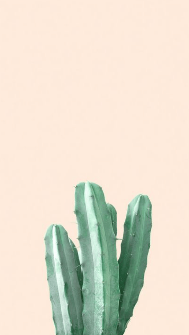 Cute Wallpaper For Iphone Pinterest Pink Plant Aesthetic Like Or Reblog If You Save Use