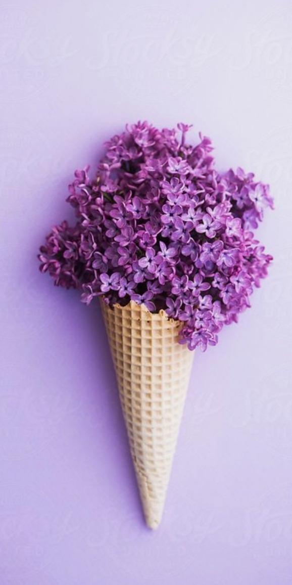 Vaporwave Iphone Wallpaper Violeta Purple Tumblr