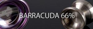 66_barracuda_header