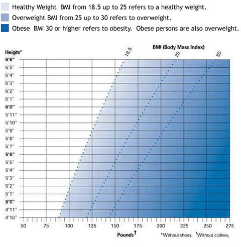 bmi chart for women under 18 - Timiznceptzmusic
