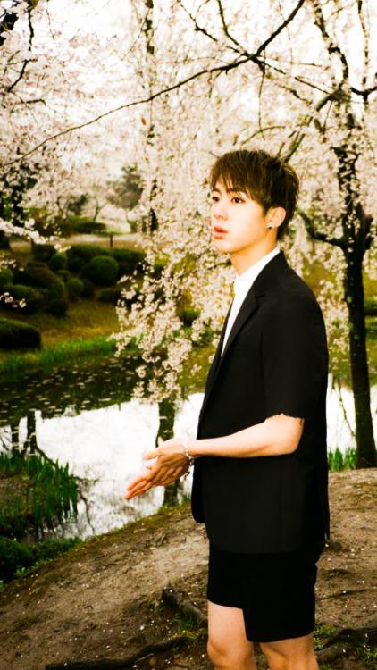 Jungkook Wallpaper Iphone Kim Seokjin Wallpaper Tumblr
