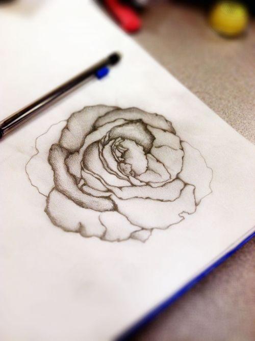 Vintage Flower Wallpaper Iphone Rose Drawing On Tumblr