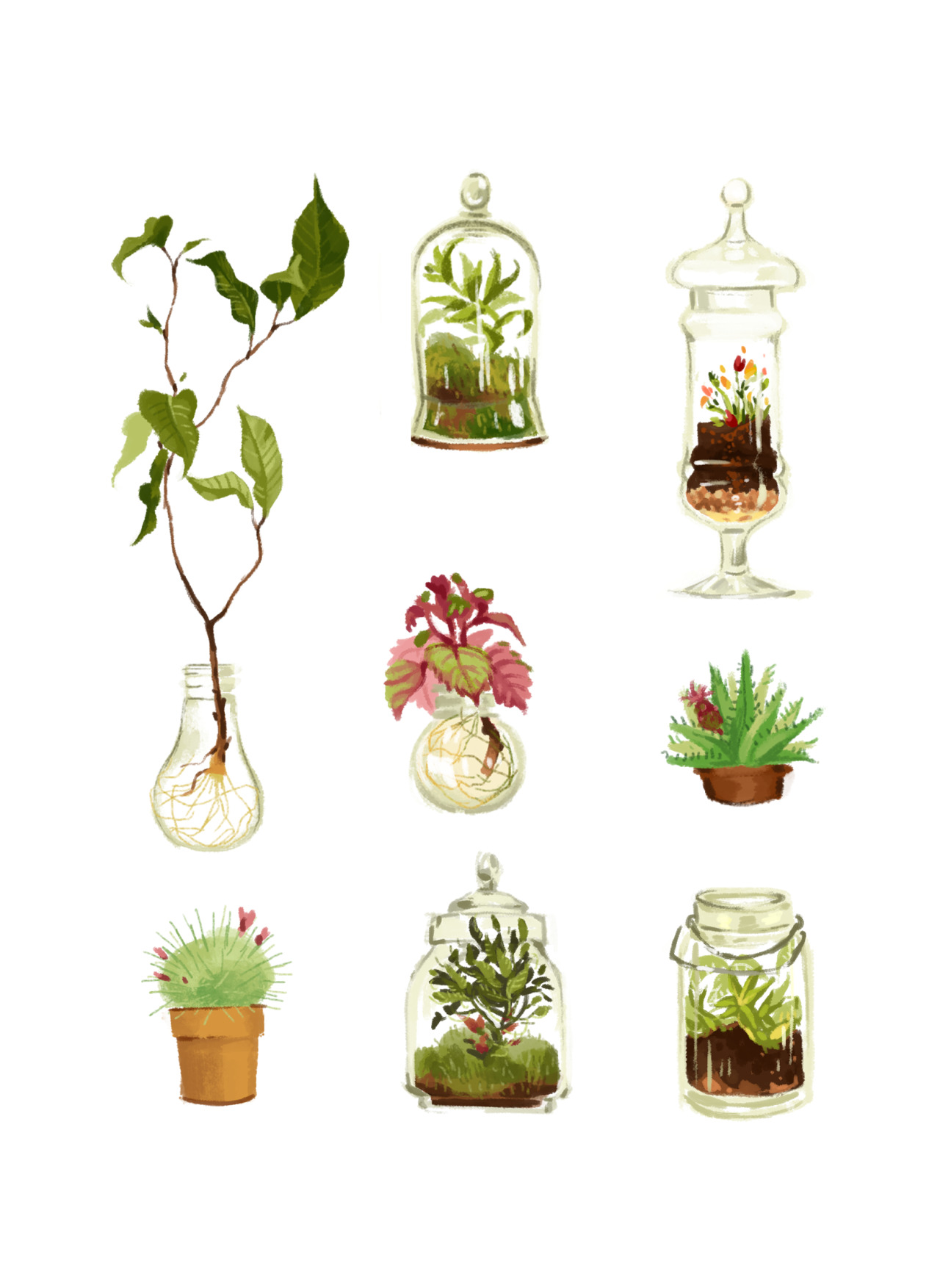 Plants Tumblr Plants In Glass And Pots Eugènes Thing The Cylinder