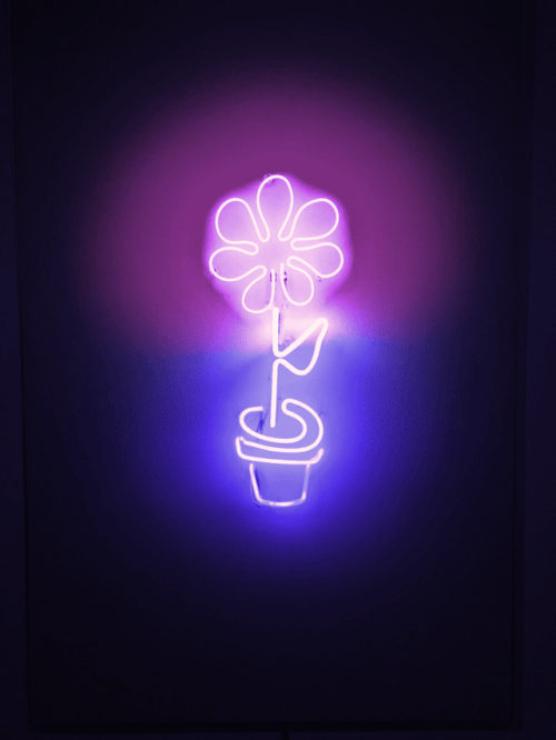 Jack Barakat Quotes Wallpaper Aesthetics Purple Tumblr