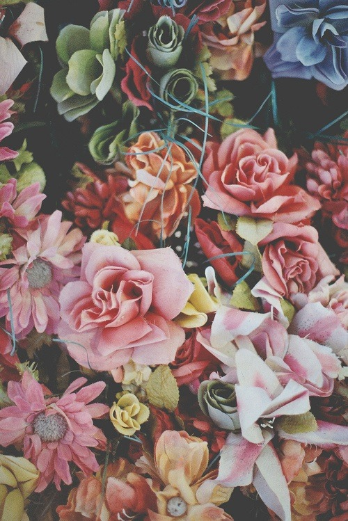 Indie Wallpaper Iphone 6 Beautiful Bouquet Of Flowers Tumblr