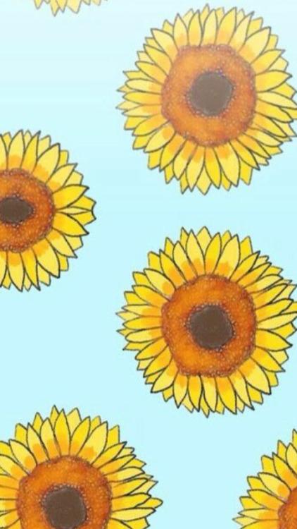 Cute Sunflower Wallpaper Sunflower Background Tumblr
