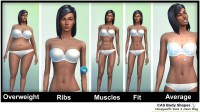 Honeywell's Sims 4 News Blog  The Sims 4 Body Shapes Im ...