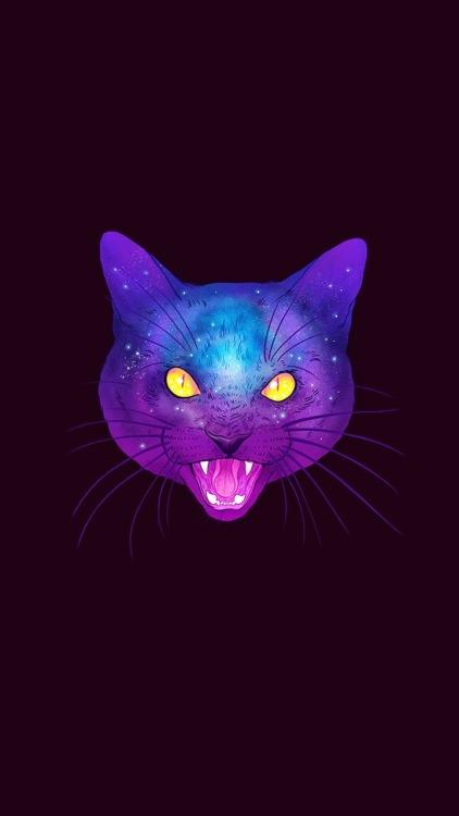 Dmt Wallpaper Hd Galaxy Cats Tumblr