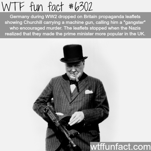 Canape Winston But Gangster Winston Churchill - Wtf Fun Facts