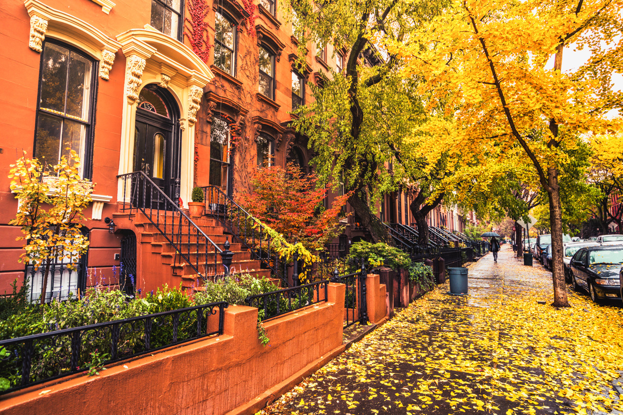 Amsterdam Fall Wallpaper Ny Through The Lens New York City Photography New York