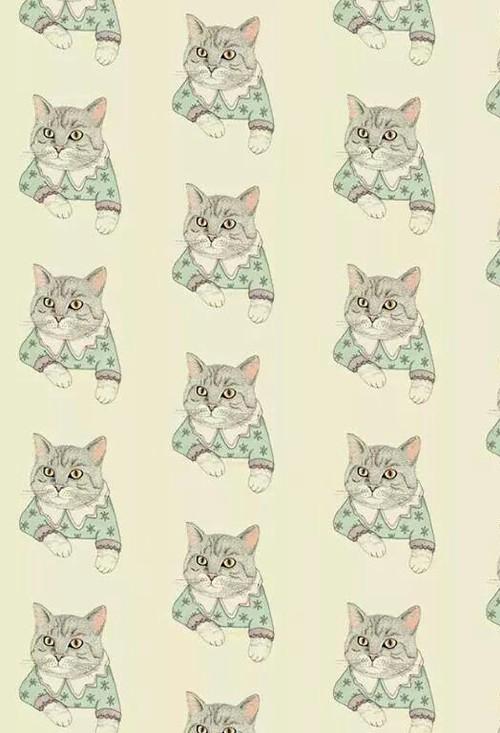 Black Cat Eyes Wallpaper Fondos De Gatos Tumblr