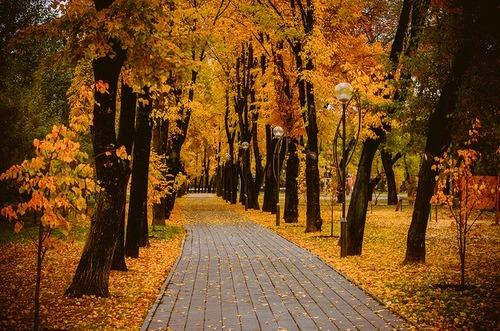 Seasonal Fall Coffee Desktop Wallpaper Fall Blog On Tumblr