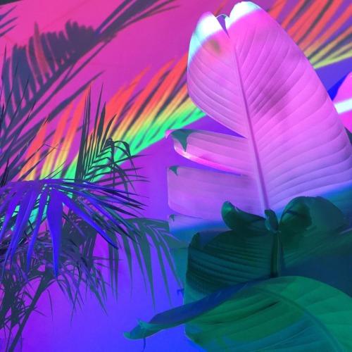 Hotline Miami Iphone Wallpaper Neon Palm Tree Tumblr
