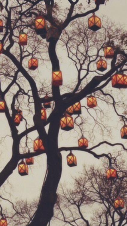 Gravity Falls Iphone 6 Wallpaper Fall Backgrounds Tumblr