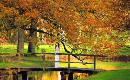 Seasonal Fall Coffee Desktop Wallpaper Herbst On Tumblr