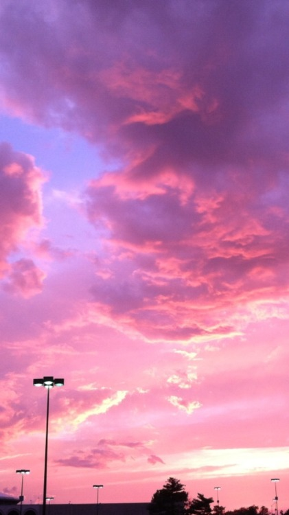 Iphone Wallpaper Quote Pink Cloud Background Tumblr