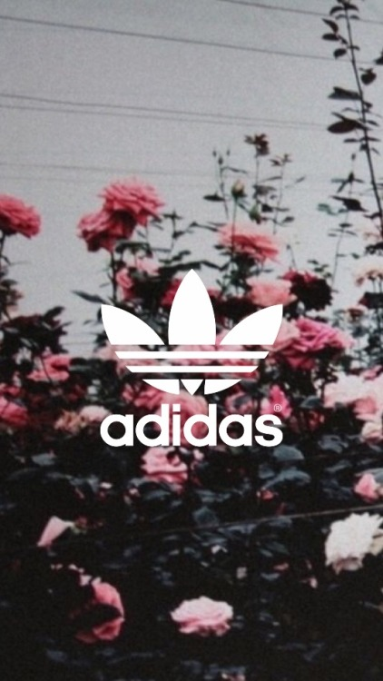Gangsta Girl Iphone Wallpaper Grunge Adidas Tumblr