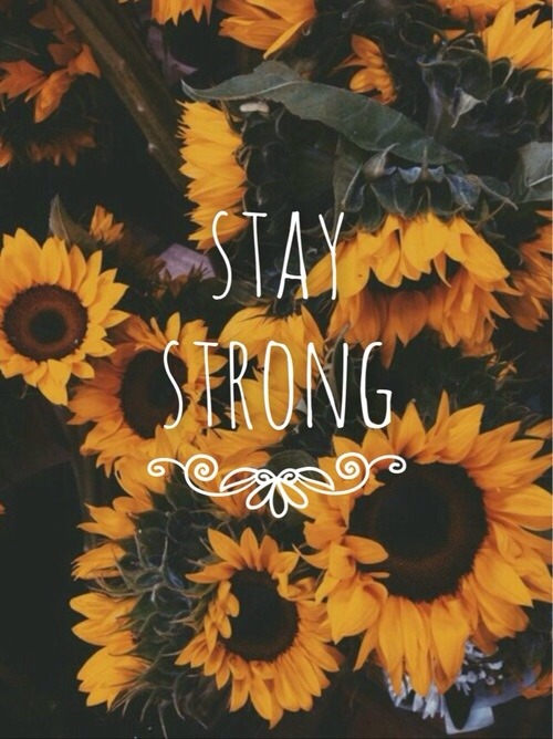 Sunflower Wallpaper With Quote Happiness Quotes On Tumblr