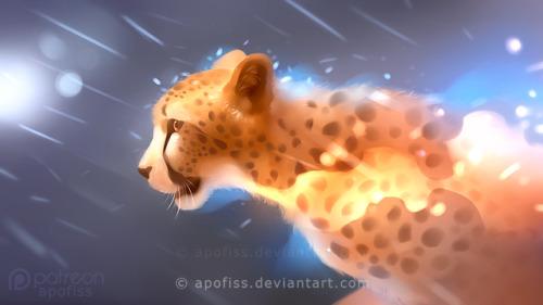3d Cheetah Wallpaper Cheetah On Tumblr