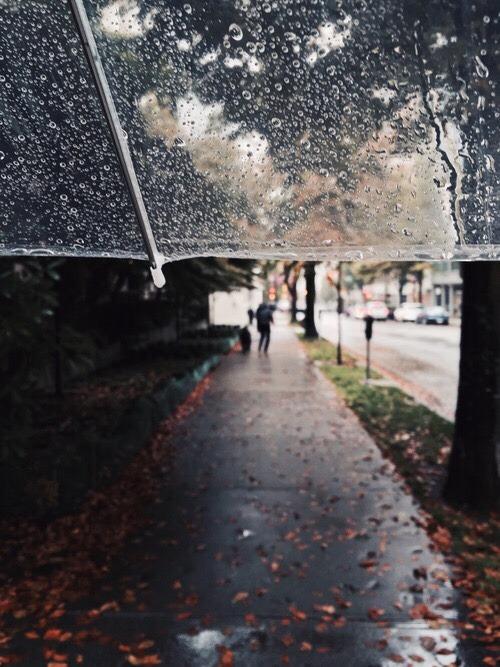 Fall Leaves Wallpaper Iphone Rainy Autumn Day Tumblr
