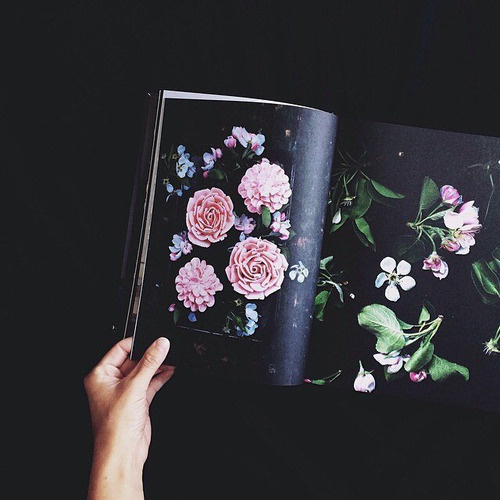 Floral Inspirational Quote Wallpaper Flower Drawing On Tumblr