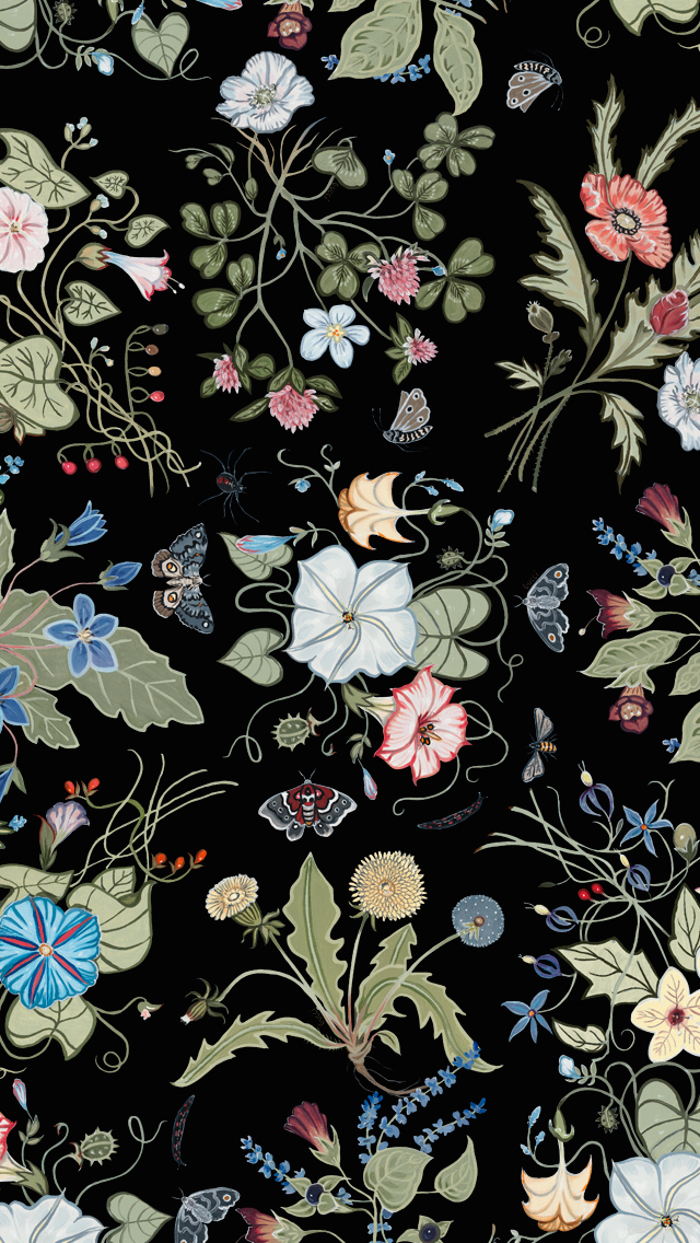 Black Wallpaper For Iphone 7 Gucci Flora Knight